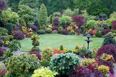 Amazing example of using contrasting color and texture. Garden in the UK.