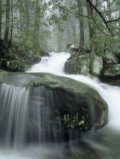 Leconte Creek Cascading over Boulders after Heavy Rains, Great Smoky Mountains National Park