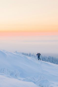 Skiing photography, cross country skiing in Finland. Winter sunset photo.