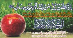 Quranic Ayat (Verse) about Rizq - Importance of Rizq in Islam - Allah provides Rizq to whom He wills without limit - Quotes about Rizq