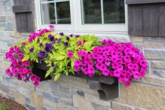 Planters of them)! What a beautiful window box! Need to pin and remember this for next year. Click through to link and see a total of 20 planter ideas!What a beautiful window box! Need to pin and remember this for next year. Click through to link a Full Sun Planters, Window Planter Boxes, Planter Ideas, Window Box Plants, Fall Planters, Window Box Flowers, Flower Boxes, Container Plants, Container Gardening