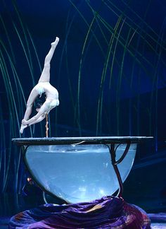 Checked this one off the list. Amazing performers. Cirque-du-Soleil-Amaluna. Attended in Atlanta,  October 2014 courtesy of my sweet son.
