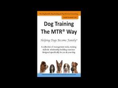 Learn about dog training and pet sitting the DogSmith way. Yes you CAN leave home without them. Contact us today so we can get started. Elkton to Galena MD, Bear Glasgow and Newark DE.