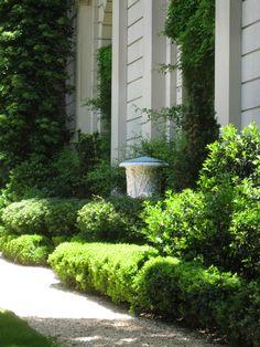 Preppy Look, Planting, Sidewalk, Plants, Side Walkway, Walkway, Walkways, Pavement