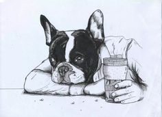French Bulldog , Frenchie , The Dog Painter , Jeroen Teunen , Beer , Barfly