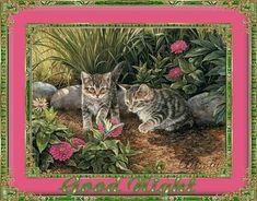 JÓ ÉJT! - donerika.lapunk.hu Good Night, Cats, Animals, Nighty Night, Gatos, Have A Good Night, Kitty Cats, Animaux, Animal