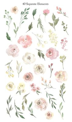 Watercolor Flowers Clipart Gentle Floral Clip Art PNG Free Commercial Use Pink Y. Watercolor Flowers Clipart Gentle Floral Clip Art PNG Free Commercial Use Pink Yellow White Roses Bo - l ' a r t - Watercolor Clipart, Floral Watercolor, Watercolor Paintings, Free Watercolor Flowers, Watercolor Wedding, Diy Painting, Tattoo Watercolor, Painting Flowers, Watercolor Design