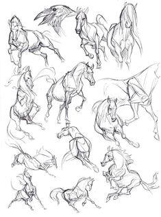 Kate Arrow Slide # Arrow Slide – The World Horse Drawings, Art Drawings Sketches, Animal Drawings, Drawing Animals, Sketch Drawing, Drawing Ideas, Pencil Drawings, Sketch Ideas, Drawing Art