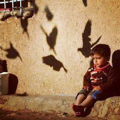 Instagram photo by @kurdistanheye (Kurdistan) | Statigram....so cuuuuuuuuuuute