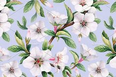 Spring blossom. Watercolor flowers by Alexandra on @creativemarket