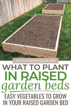 What To Plant In Raised Garden Beds + DIY Tutorial This guide will show you how to build cheap DIY raised garden beds + ideas on what to plant in raised garden beds! Check out these tips for vegetables, herbs and flowers that are perfect for your garden. Cheap Raised Garden Beds, Diy Garden Bed, Raised Vegetable Gardens, Building Raised Garden Beds, Vegetable Garden Design, Easy Garden, Vegetable Planters, Raised Bed Diy, Raised Garden Bed Design