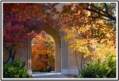 Nov. 11, 2011 - Iowa State University Alumni Association