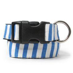 Stripes Dog Collar