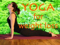 Can yoga help you lose weight? A look at yoga weight loss fact and fiction along with different aspects of a yoga weight loss plan. The best yoga for weight loss results includes certain yoga poses.