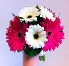 Gerbera daisies- use pink and orange daisies, awesome.
