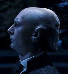 Krinkel (links) hief zijn hand op om een dodelijke vloek uit te spreken, maar harry stak instinctief zijn eigen hand uit en greep Krinkels gezicht- AAAAAAAAH!  BLZ.247 Ik vind deze zin mooi omdat Krinkel Harry niet kan aanraken doordat Voldemort op zijn achtehoofd zit. En Harry dan ontzettend veel pijn in zijn litteken voelt.