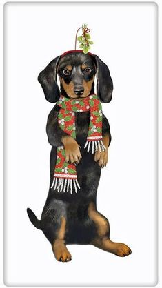 Style the dog lover's kitchen for Christmas. Discover our collection of dish…
