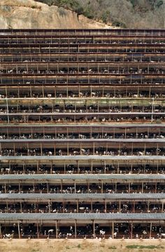 Fukuyama - Andreas Gursky - 2004 - 20950