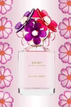 If you gravitate toward fruity and floral scents, then consider Marc Jacobs Daisy Eau So Fresh Sorbet Eau de Toilette, $89, your new go-to, thanks to its notes of mandarin, apple blossom, and jasmine.   - Cosmopolitan.com