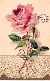 Image result for nostalgische rozen plaatjes
