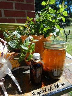 Homemade Mint Extract http://simplelifemom.com/2014/09/24/homemade-mint-extract/#S4Dv2VQ5jvUEsDbx.32