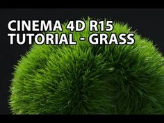 Cinema 4D Tutorial: Grass - So the R15 grow grass button only provides static grass. Great tool though it doesn't respond to dynamics. https://www.youtube.com/watch?v=enJmEa9Rkkc