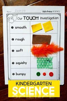 Little SCIENCE Thinkers! Kindergarten Science Curriculum