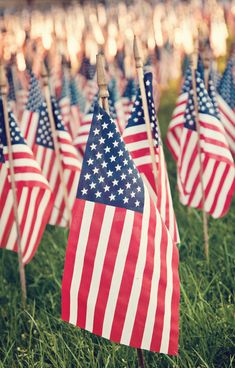 60 Incredible Patriotic Images from Photographers. #Laylagrayce #holidays #memorialday2012