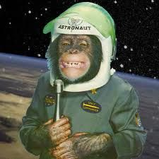 first monkey in space - Google Search