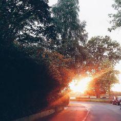 Golden October days... . .. . Einen schönen Abend ihr lieben Insta-Herzen... . #gutenabend #gutenacht #goodnight #goodevening #abends #evenings #goldendays #thesedays #sunshine #sunny #sunnydays #dayslikethese #slowdown #slowliving #theartofslowliving #thesimplethings #finditliveit #itsthelittlethings #nature #sunset #folkvibes #thatsdarling #thatauthenticfeeling #liveauthentic #verilymoment #tv_living #thehappynow #moody #littlestoriesofmylife