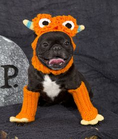 Dog Monster Costume Free Crochet Pattern from Red Heart Yarns