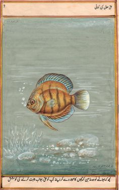 Indian Fish Painting
