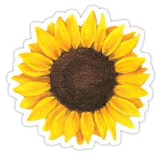 'Sunflower drawing' Sticker by GlennStevens Sunflower tattoo – Fashion Tattoos Tumblr Stickers, Star Stickers, Cute Stickers, Simbolos Tattoo, Leg Tattoos, Flower Tattoos, Plant Drawing, Drawing S, Sunflower Drawing
