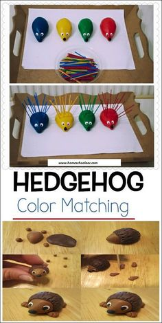 Use the coloured number sticks and make quills for the hedgehogs according to th. - Use the coloured number sticks and make quills for the hedgehogs according to their colours. the qu - Fine Motor Activities For Kids, Motor Skills Activities, Toddler Learning Activities, Montessori Activities, Color Activities, Fine Motor Skills, Preschool Crafts, Crafts For Kids, Hedgehog Colors