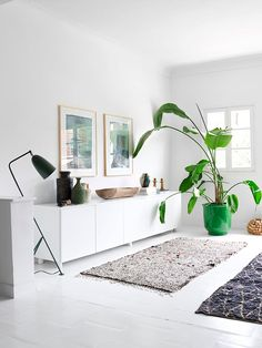 a modern ethnic oasis - such a statement, an oversized green plant can really add to your living room