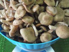 Hellena ...din bucataria mea...: Salata de ghebe - pentru iarna Stuffed Mushrooms, Vegetables, Food, Salads, Stuff Mushrooms, Meal, Eten, Vegetable Recipes, Meals