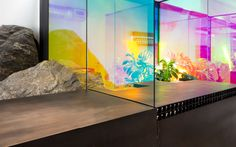 Aesop Wynwood, Miami  | panes of dichroic glass