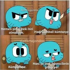 Darwin Gumball, Comedy Pictures, Stupid Cat, Comedy Zone, Best Memes Ever, Jeff The Killer, Funny Times, Cartoon Network, Ladybug