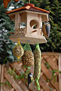 Nice idea to put the food in the netting. Would probably work well with nesting material too.