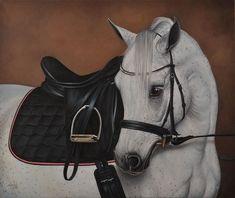 20x24 GICLEE GRAY DRESSAGE hunter MARE STALLION arabian horse art print SHIVAK