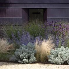 Farmhouse Landscaping, Modern Landscaping, Front Yard Landscaping, Landscaping Ideas, Landscaping Plants, Modern Planting, Landscaping Company, Modern Front Yard, Front Yard Design