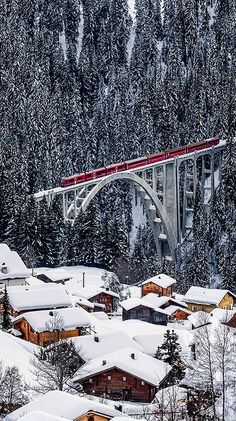 I have done this train ride! So beautiful! Railway on the viaduct of Long Meadow, (Albula/Bemina landscapes) in the Alps between Switzerland and ITALY