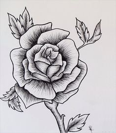Easy Rose Drawing in easy rose drawings in black and white collection Рисунки Розы