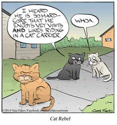 Break of Day von Nate Fakes für den Februar 2018 - Cats In Comics ~ 1 - Cat Jokes, Cartoon Jokes, Funny Cartoons, Cats Humor, Cartoon Pets, Memes Humor, Cute Funny Animals, Funny Animal Pictures, Cute Cats