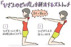膝の上にボヨンとのっかった憎きぜい肉。実はこれは脂肪やたるみではなく、お尻や太ももの老廃物が下がってきた証拠! ストレッチで膝上に負担をかけて、老廃物を溜め込まないようにする簡単ストレッチで膝上のぜい肉を解消しましょう♪ Keep Fit, Stay Fit, Health Diet, Health Fitness, Yoga Training, Bed Workout, Health Words, Skinny Motivation, Body Hacks