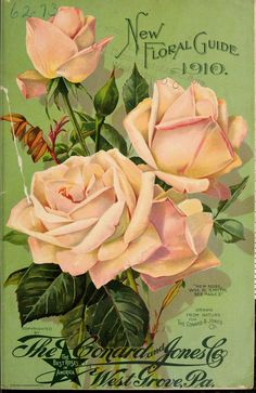 New floral guide : 1910 The Conard & Jones Co.