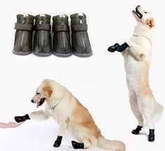 Pet Leso Pet Shoes Anti Skid Dog Winter Boots For Small Or Medium Pet Black 2 19x165LxW *** You can get more details by clicking on the image.