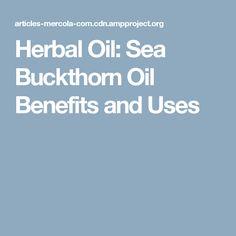 Herbal Oil: Sea Buckthorn Oil Benefits and Uses Herbal Oil, Oil Benefits, Slow Down, Your Skin, Anti Aging, Herbalism, Sea, Herbal Medicine, The Ocean