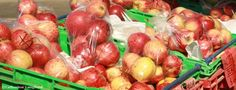 The Bay of Islands is known excellent fresh fruit produce. Farmers Markets in Paihia on Thursday avo and Kerikeri on Sunday morning. Stuff To Do, Things To Do, Bay Of Islands, Island Food, Sunday Morning, Vacation Ideas, Farmers Market, Fresh Fruit, Wine Recipes