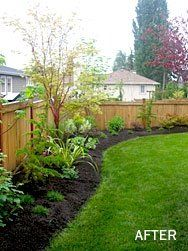 back yard fence and then landscaping really enjoy the curved border effect maybe for lower yard to tie in the peonies
